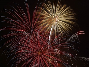 <!-- en-GB-->Bonfire and Fireworks Evening<!-- en-GB-->